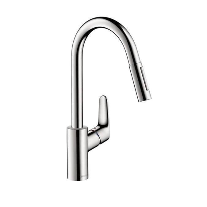 Hansgrohe Single Hole Kitchen Faucets item 04505000
