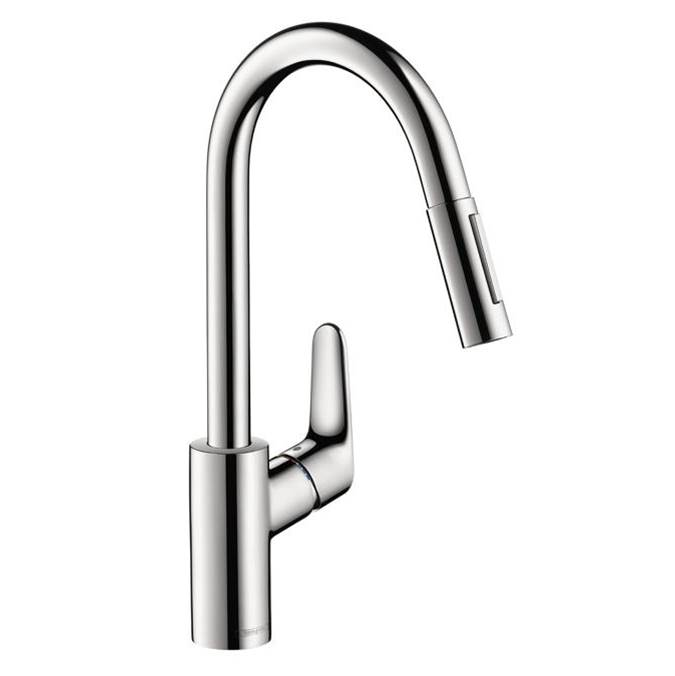 Hansgrohe Single Hole Kitchen Faucets item 04506001